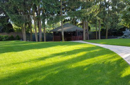 Zielony ogród i piękny trawnik z rolki